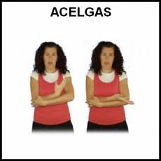 ACELGAS - Signo