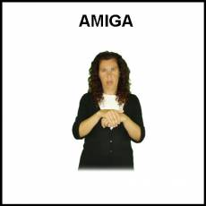 AMIGA - Signo