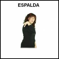 ESPALDA - Signo