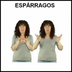 ESPÁRRAGOS - Signo