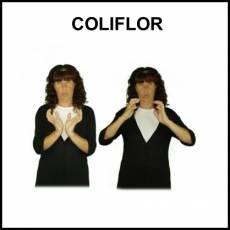 COLIFLOR - Signo