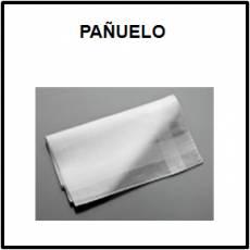 PAÑUELO (TELA) - Foto