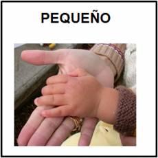 PEQUEÑO - Foto