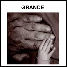 GRANDE - Foto