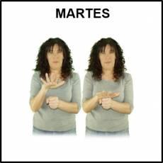 MARTES - Signo
