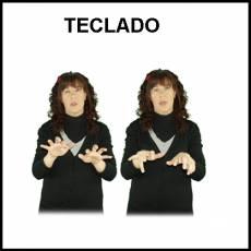 TECLADO - Signo
