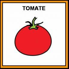 TOMATE - Pictograma (color)