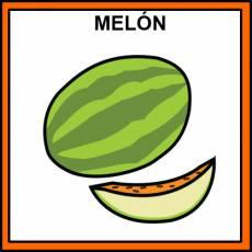 MELÓN - Pictograma (color)