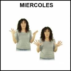 MIÉRCOLES - Signo