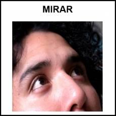 MIRAR - Foto