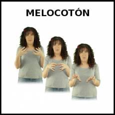 MELOCOTÓN - Signo