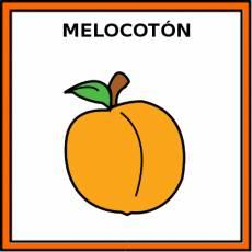 MELOCOTÓN - Pictograma (color)