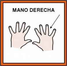 MANO DERECHA - Pictograma (color)