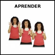APRENDER - Signo