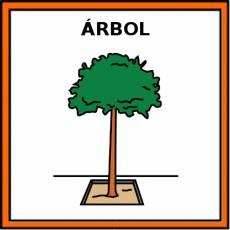 ÁRBOL - Pictograma (color)