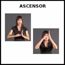 ASCENSOR - Signo