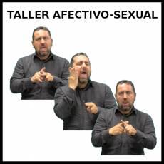 TALLER AFECTIVO SEXUAL - Signo