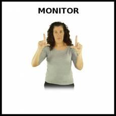 MONITOR (ORDENADOR) - Signo