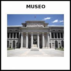 MUSEO - Foto