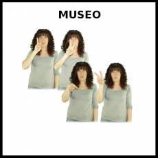MUSEO - Signo