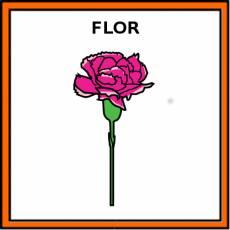 FLOR - Pictograma (color)