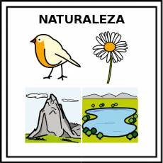 NATURALEZA - Pictograma (color)