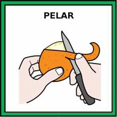 PELAR - Pictograma (color)