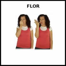FLOR - Signo