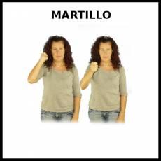 MARTILLO - Signo