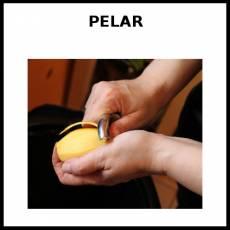 PELAR - Foto
