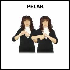 PELAR - Signo