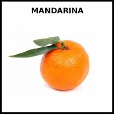 MANDARINA - Foto
