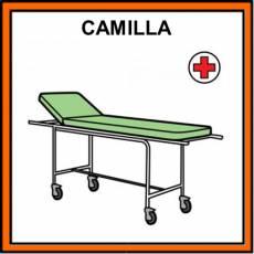 CAMILLA - Pictograma (color)