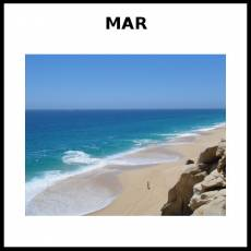 MAR - Foto