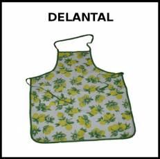 DELANTAL - Foto