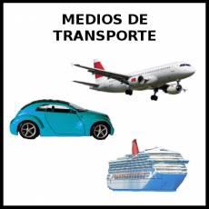 MEDIOS DE TRANSPORTE - Foto