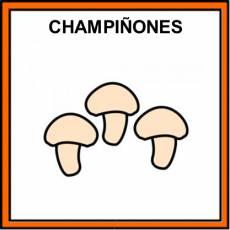 CHAMPIÑONES - Pictograma (color)