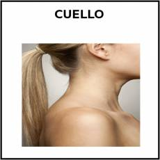 CUELLO - Foto