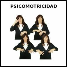 PSICOMOTRICIDAD - Signo