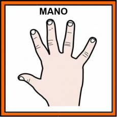 MANO - Pictograma (color)