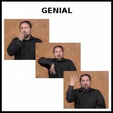 GENIAL - Signo