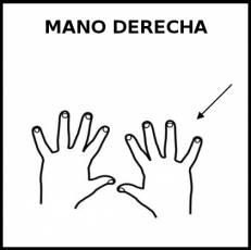 MANO DERECHA - Pictograma (blanco y negro)