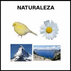 NATURALEZA - Foto