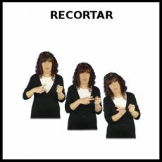 RECORTAR - Signo