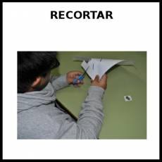 RECORTAR - Foto