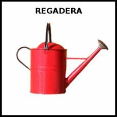 REGADERA - Foto