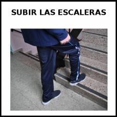 SUBIR LAS ESCALERAS - Foto