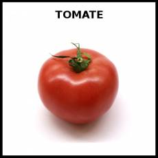 TOMATE - Foto
