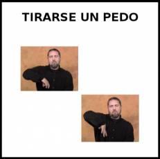 - Signo