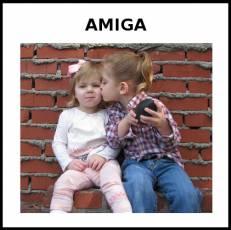 AMIGA - Foto